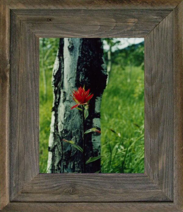 """5"""" x 5"""" Western Barnwood Picture Frame"""