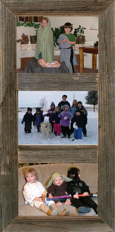 """Vertical Barnwood Panel Frame for (3) 5""""x 7"""" pictures"""