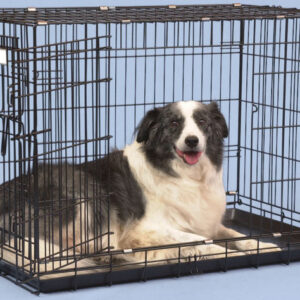 Single Door Fold & Go Crate