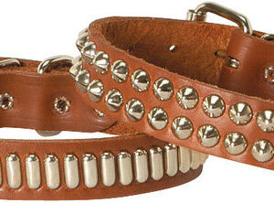 Bully Leather Collars