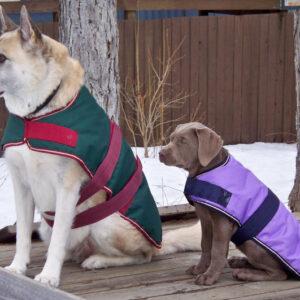 "Ripstop Dog Blanket 16"""