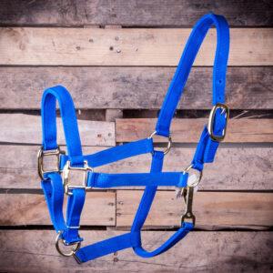 Large Horse Adjustable - Blue